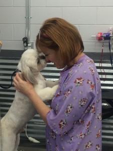 canine grooming boise idaho