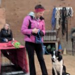 Dog Training Classes in Boise
