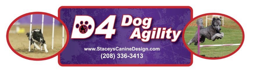 D4 Dog agility classes